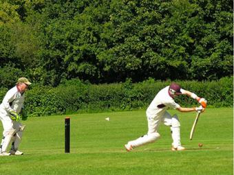Damerham cricket club